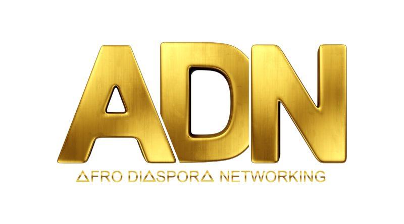 Afro Diaspora Networking : La rencontre des solutions pour un futur souhaitable