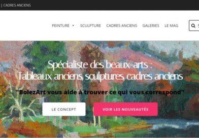 BolezArt, les beaux-arts sur le net